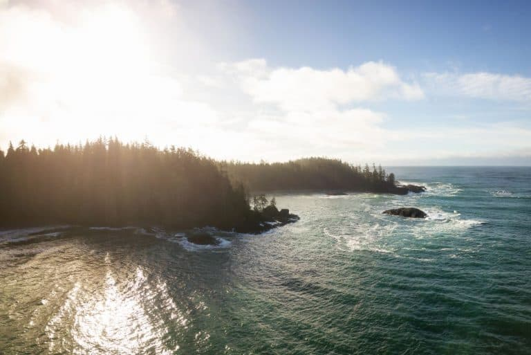 Aerial view of tofino bc
