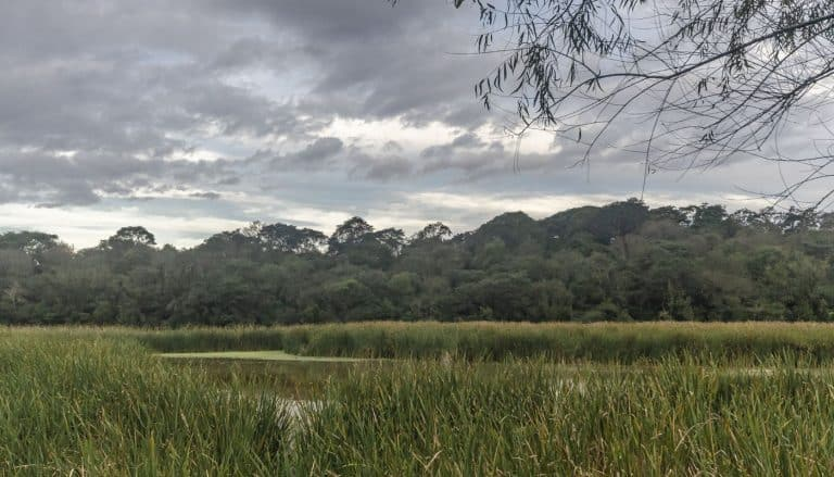 El Rey National Park argentina NL