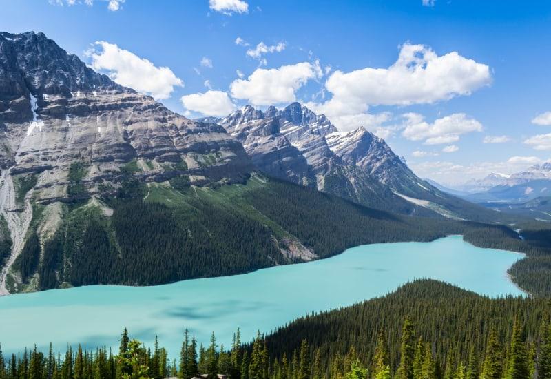 peyto lake viewpoint banff SP