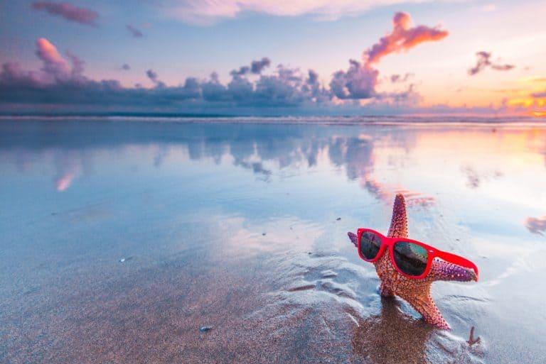 Starfish in sunglasses at double six beach seminyak