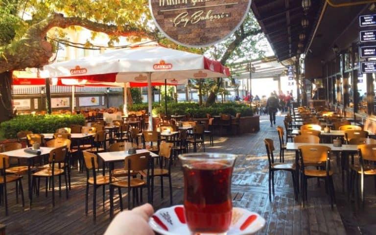 Çinaralti Tea Garden istanbul turkey NL